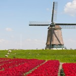 How to set up a conference call to the Netherlands
